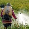 تكنولوجيا جديدة للكشف السريع عن بقايا المبيدات