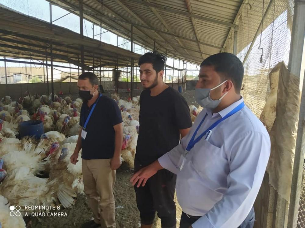 زراعة خانيونس تتفقد مزارع الحبش ومزارعي الفلفل الحار