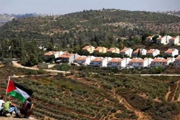 الاحتلال يستولي على أراضٍ واسعة في سلفيت وقلقيلية