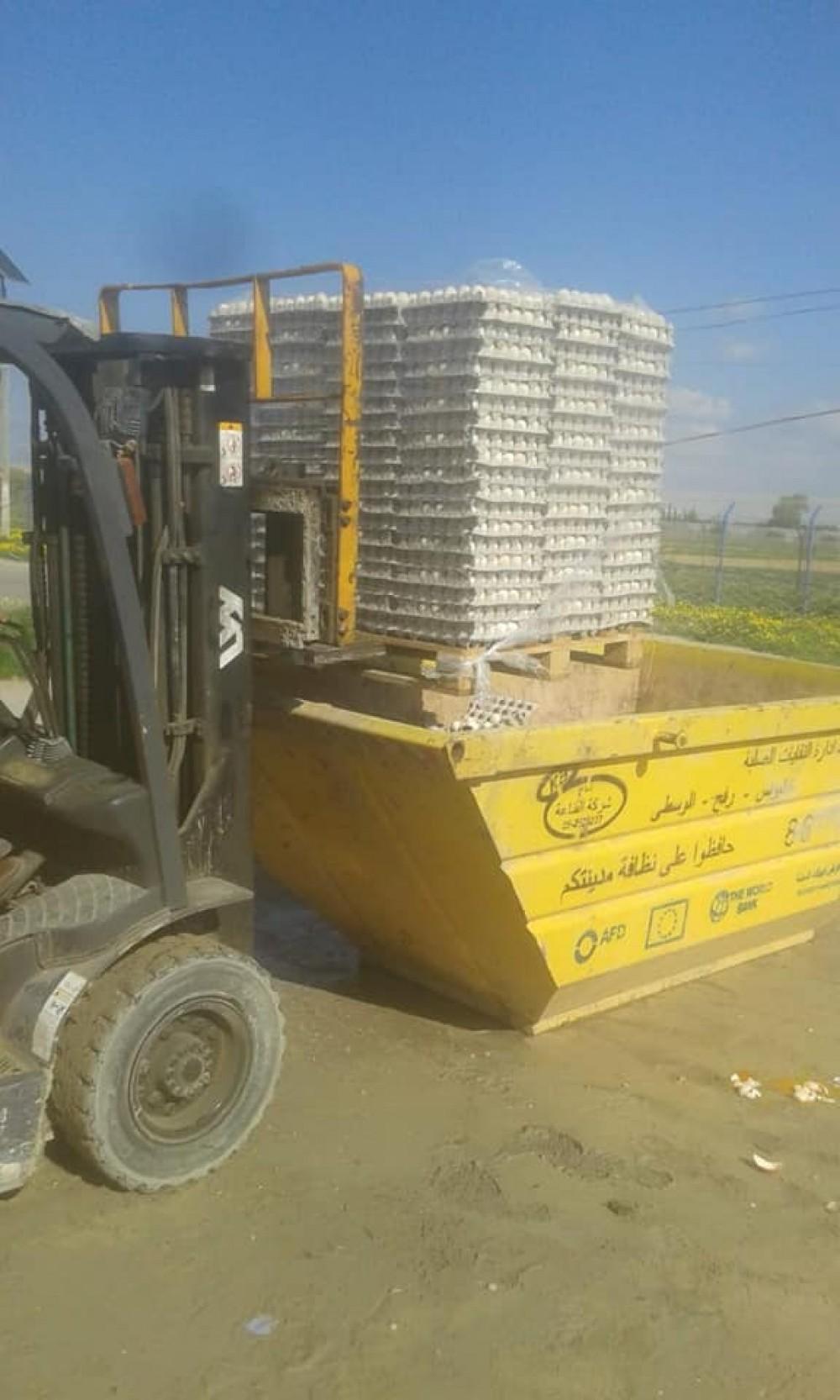 الزراعة تتلف عدد 11670 بيض مخصب لاحم مخالف للمواصفات