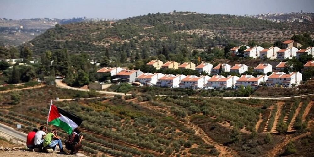 settlement350