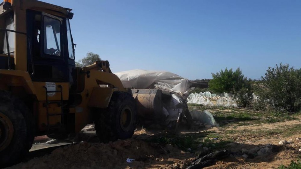 سُلطة الأراضي تزيل تعديات سكنية وزراعية عن أراضي حكومية في خان يونس