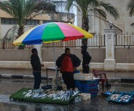 هطول الأمطار على مدينة غزة... تصوير: عطية درويش