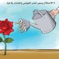 الاحتلال يسعى لنشر الفوضى في قطاع غزة