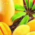 لمرضى السكر.. احذر البطيخ والأناناس والمانجو ترفع مستوياته فى الدم