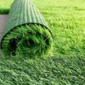 تحذيرات من تأثير العشب الصناعى على الطيور والفراشات والنحل