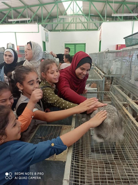 زراعة شمال غزة تواصل تنفيذ مبادرة