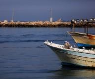 مواطنون ينتشرون في ميناء غزة للاستمتاع بالأجواء المشمسة الدافئة. تصوير: عطية درويش