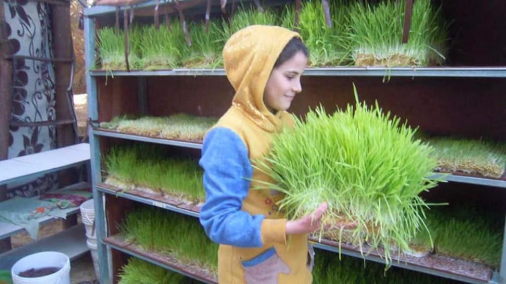 مزراعات صغيرات ينجحن في إنتاج