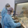 مختبرات وزارة الصحة في قطاع غزة