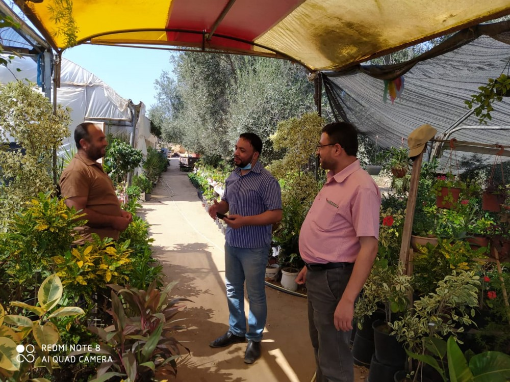 زراعة خانيونس تتفقد مشاتل الفاكهة والزينة لإرشاد المزارعين