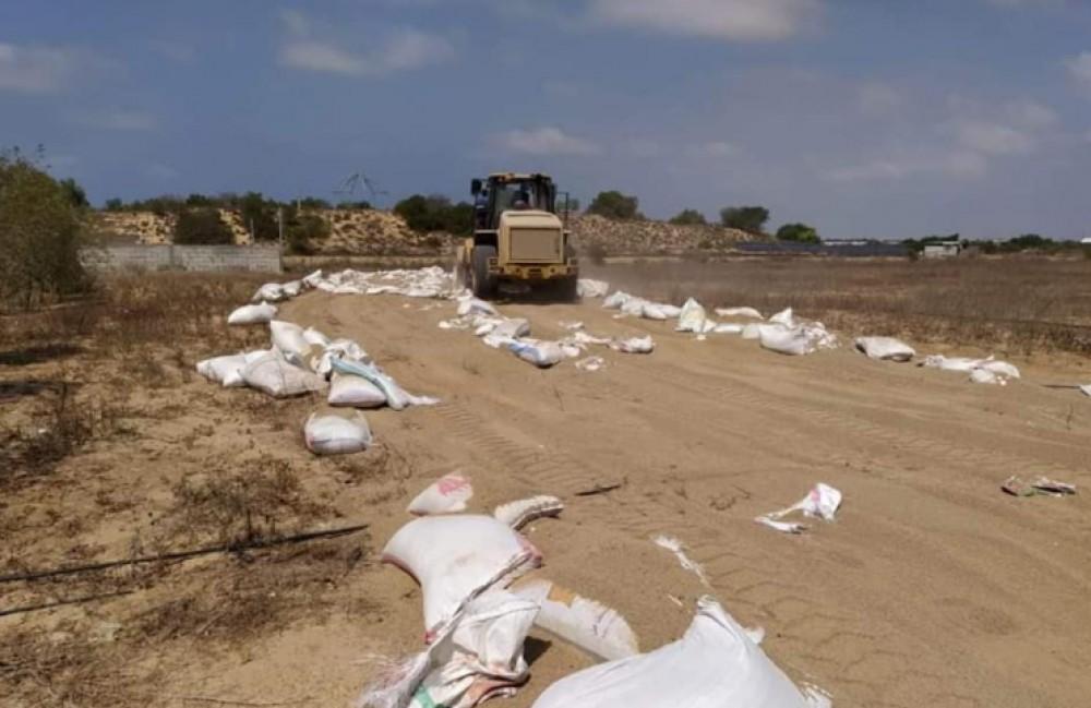 خلال عمليات إتلاف الأعلاف من قبل وزارة الزراعة غزة