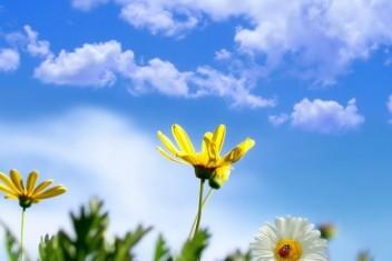 الطقس: الحرارة أعلى من معدلها العام وفرصة للأمطار في المساء