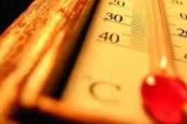 مع ارتفاع درجة الحرارة.. حافظ على صحتك بالسلطة والفواكه