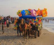 اصطياف المواطنين في الجمعة الأخيرة للإجازة الصيفية- تصوير: عطية درويش