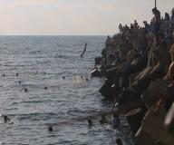 اصطياف المواطنين على شاطئ  بحر غزة مساء اليوم  تصوير: رشاد الترك