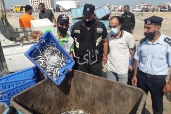 الطواقم الحكومية بغزة تتلف أسماكاً وتوقف مخبزاً ومذبحاً عن العمل