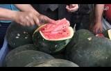 شاهد: وزارة الزراعة تفتتح موسم البطيخ في غزة