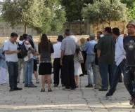عشرات المستوطنين يقتحمون المسجد الأقصى صباح الثلاثاء