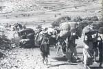 هجرة الفلسطينين عام 1948م