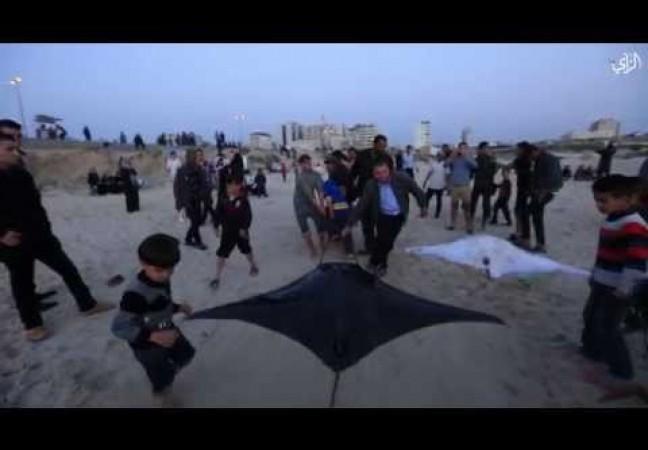 اصطياد وطواط البحر واصطفاف الناس للمشاهدة في غزة