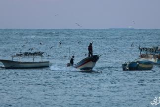 صور من بحر وميناء غزة اليوم. تصوير | عطية درويش
